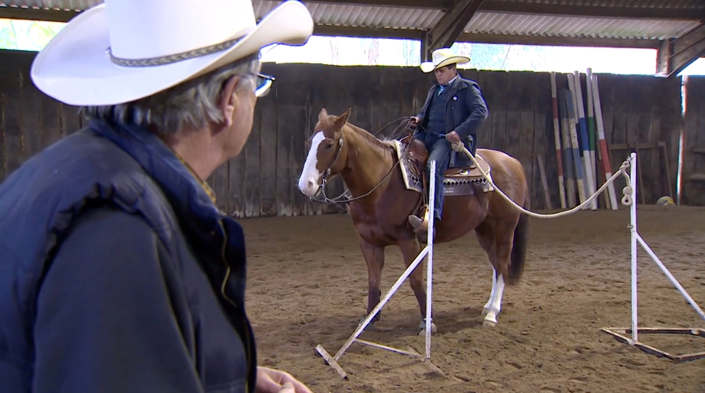 western-riding-grab